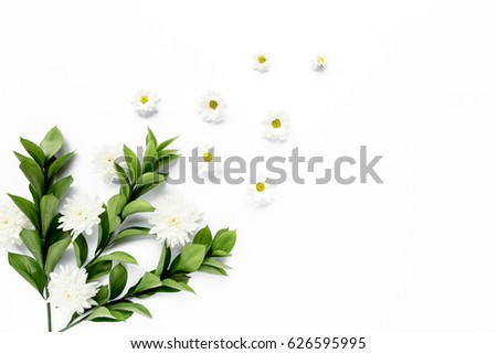 workspace with white flower chrysanthemum and chamomile branches and leaves isolated on white background. lay flat, top view #626595995