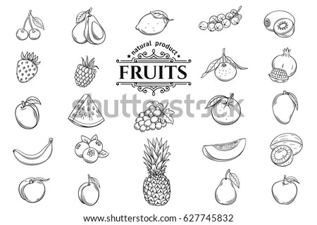 Vector hand drawn fruits icons set. Decorative retro style collection farm product restaurant menu, market label. Royalty-Free Stock Photo #627745832