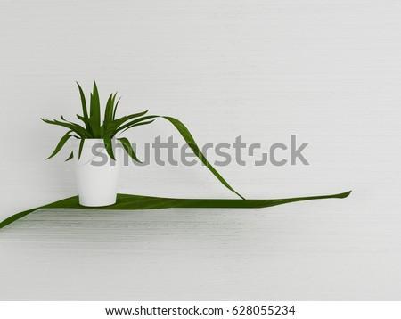 plant in the vase, 3d rendering #628055234