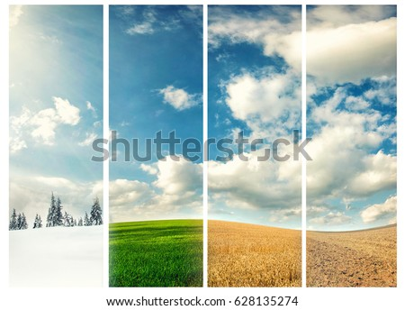 four seasons of year, winter, spring, summer and autumn, nature photo concept Royalty-Free Stock Photo #628135274