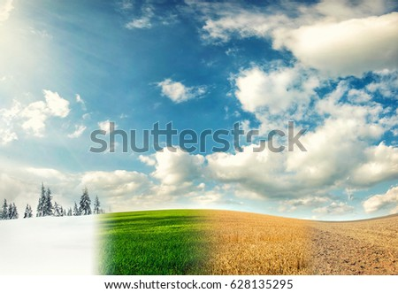 four seasons of year, winter, spring, summer and autumn, nature photo concept Royalty-Free Stock Photo #628135295