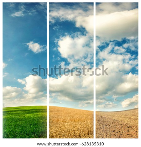 four seasons of year, winter, spring, summer and autumn, nature photo concept #628135310