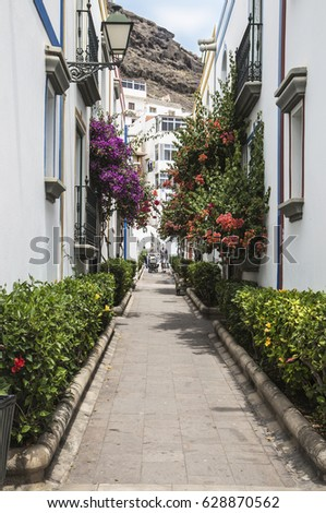 Side street off floral avenue at Puerto de Mogan on Gran Canaria, one of the Canary Islands, on a sunny early Spring day. #628870562