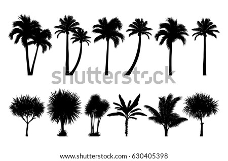 vector set of tropical palm and tree silhouettes. EPS