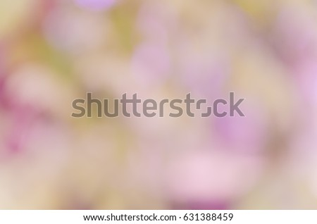 background with abstract blurred foliage and bright summer sunlight for your text or advertisment #631388459