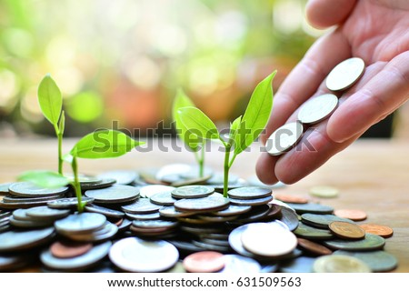 coins growth up to profit concept  investment and finance Royalty-Free Stock Photo #631509563