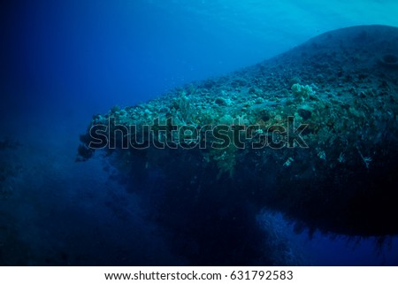 Aqaba, Jordan - February 27, 2017: Different Images of the Ship wreck 'Cedar Pride' located at the southern beach of Aqaba, Jordan. Images were captured in different dives and times. #631792583