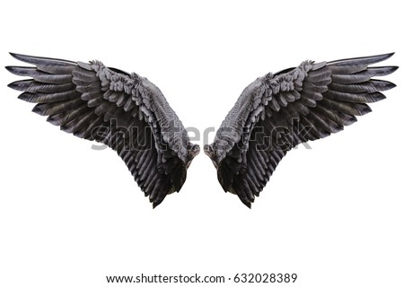 Angel wings isolated on white background with clipping part Royalty-Free Stock Photo #632028389