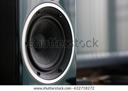 Close up details of loudspeaker woofer and tweeter driver. #632718272