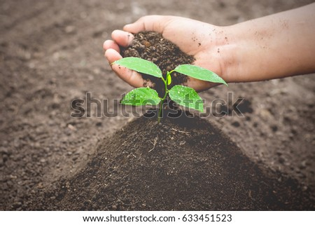The right hand of the child planting the seedlings into the fertile soil. #633451523