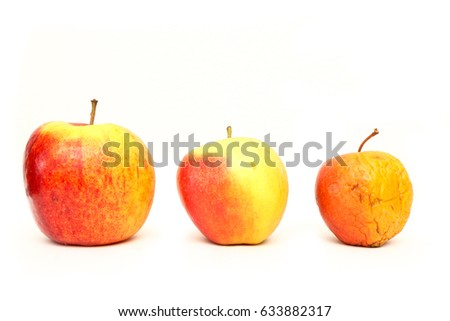 A picture of three ordinary apples, without modifications..as you know from the shop. The picture shows the maturing of the apples. One is fresh, one is older and one is dry.
