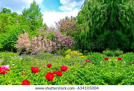 Spring garden flowers blooming landscape #634105004