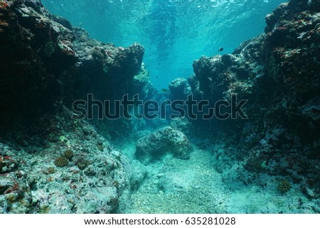 Rocky underwater seascape ocean floor outer reef carved by the waves, Pacific ocean ,Huahine, French Polynesia #635281028