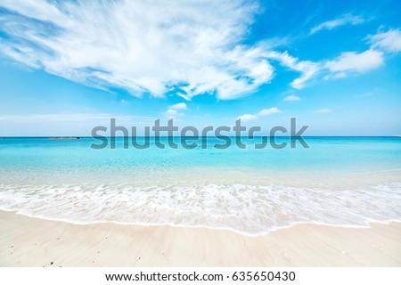 landscape of the beautiful sea #635650430