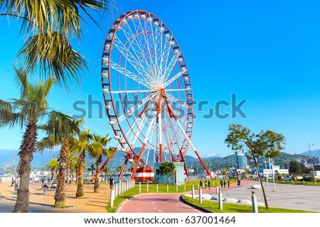 Ferris wheel, city landscape, palm trees and mountain peaks of Batumi, Georgia summer Black sea resort #637001464