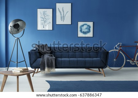 Grey additions in blue trendy living room with bicycle