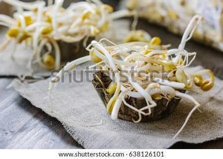 Soybean sprouts. Table with soy bean sprouts on it #638126101