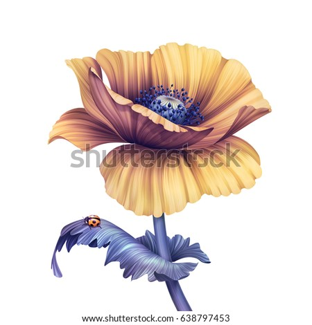 abstract tropical flower, botanical illustration, decorative poppy, scroll leaves, clip art element isolated on white background