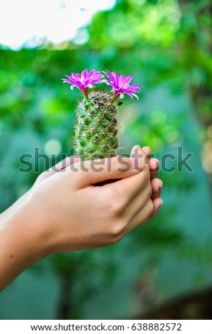 Cactus blossom on hand. #638882572