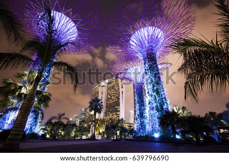 Night gardens by the Bay, Singapore city