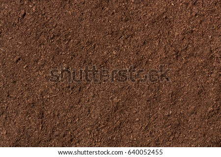 peat soil as a background Royalty-Free Stock Photo #640052455