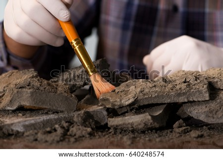 Archeologist working late night in office Royalty-Free Stock Photo #640248574