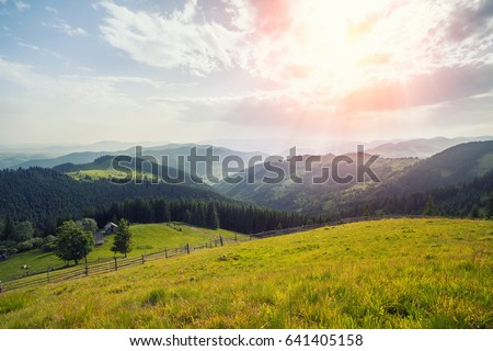 Beautiful sunny day is in mountain landscape. Carpathian, Ukraine. #641405158