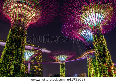Supertree in Singapore in night time. Supertree is famous spot for traveler in Singapore city. It's weird building covered by plant. Supertree will be most beautiful in night time. When the light on. #641935039