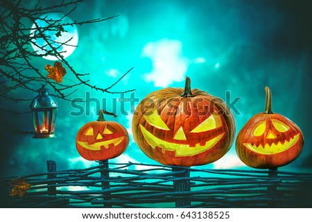 Halloween pumpkins in front of nightly spooky forest background #643138525