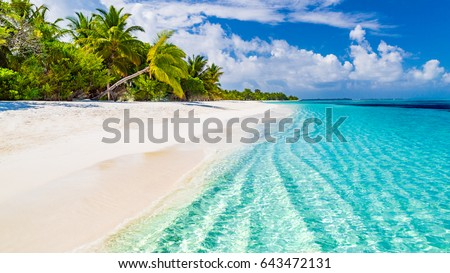 Beautiful beach with palm trees and moody sky. Summer vacation travel holiday background concept. Maldives paradise beach. Luxury travel summer holiday background concept. Royalty-Free Stock Photo #643472131