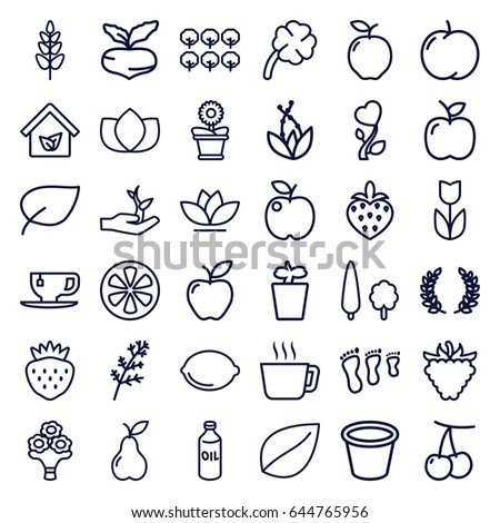 Leaf icons set. set of 36 leaf outline icons such as apple, cherry, beet, deel, tree, oil, lotus, leaf, tea cup, pot for plants, plant in pot, flower pot, flower, pear #644765956