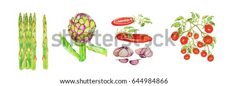 watercolor painting of asparagus,artichoke ,tomato,garlic ... #644984866