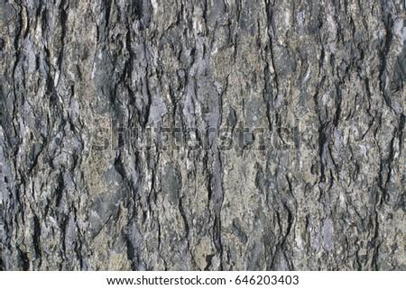 Rough split face stone texture #646203403