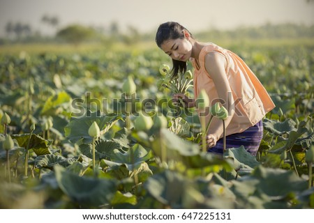 Asian girl is collecting lotus in the morning. #647225131