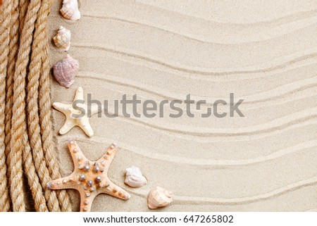 Starfish and palm leaves lying on the sea sand . There is a place for labels. #647265802