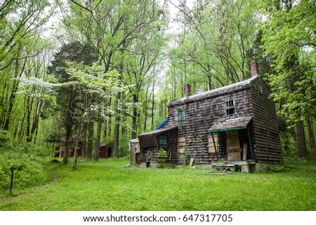Abandoned house in the woods #647317705