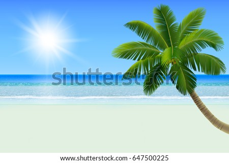 Calm sea (ocean) with horizon, an empty big tropical beach with white sand and a palm (a coconut tree), clear blue sky with the Sun. Realistic vector illustration. #647500225