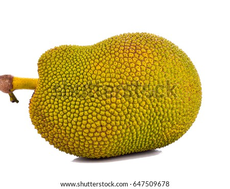 Jackfruit on a white background . #647509678