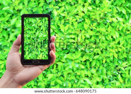 Cell phone on a green foliage background. #648090175