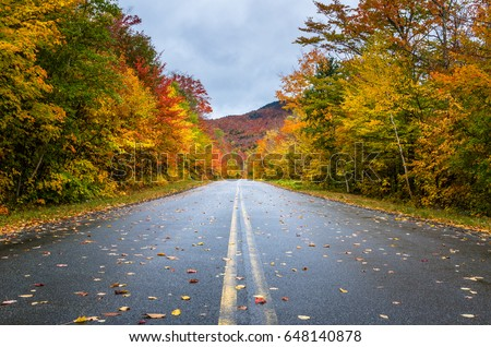 Deserted Straight Mountain Road on a Rainy Autumn Day. Some Fallen Leaves are on the Wet Asphalt. Beautiful Fall Colors. Adirondacks, Upstate New York #648140878