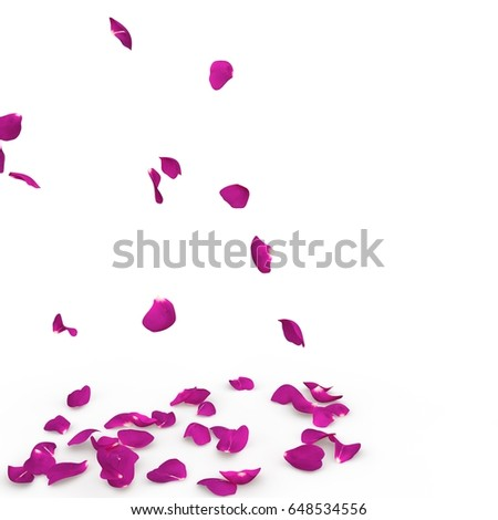 Purple rose petals fall to the floor. Isolated background #648534556