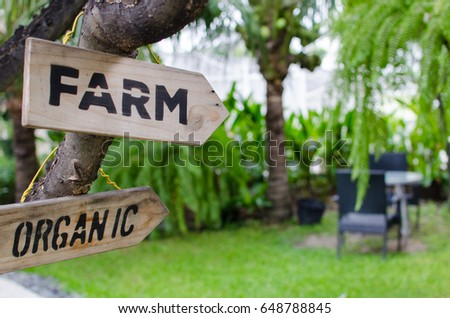 FARM and ORGANIC wooden signs with view of bench in the garden, selective focus