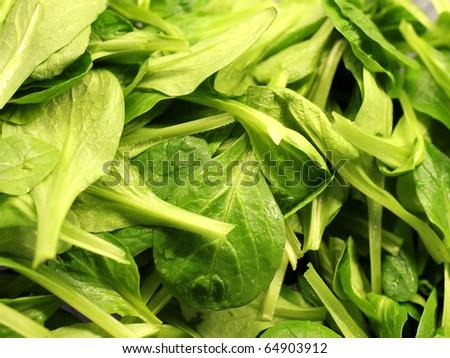 green fresh salad leafs #64903912