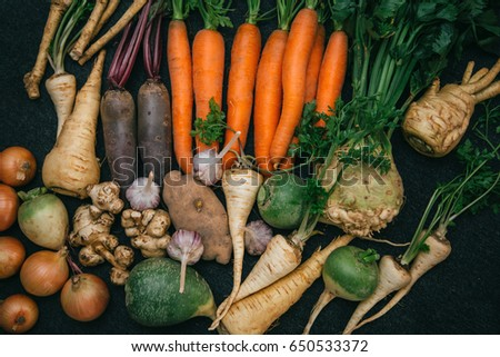 Root crops, carrots, parsley root, turnip, onion, garlic, Jerusalem artichoke, horseradish. Root crops background. Food background #650533372