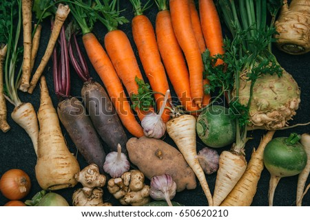 Root crops, carrots, parsley root, turnip, onion, garlic, Jerusalem artichoke, horseradish. Root crops background. Food background #650620210