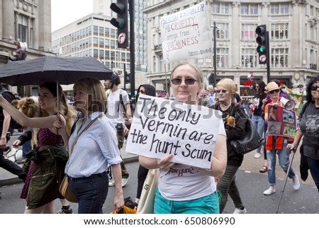 London, United Kingdom - May 29, 2017: Anti Fox Hunting. After Prime Minister May put forth the suggestion of a free vote on reintroducing fox hunting, people from around Britain came out to protest. #650806990