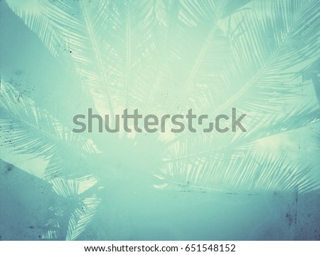 Abstract summer concept background of coconut tree reflection with vintage filter