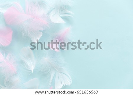 abstract background. Background for design with soft colorfull feathers pattern. #651656569