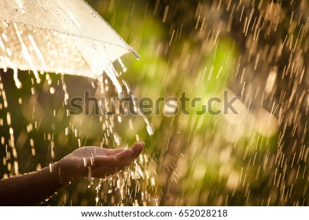Woman hand with umbrella in the rain in green nature background Royalty-Free Stock Photo #652028218