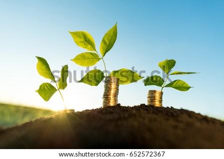money growth concept #652572367